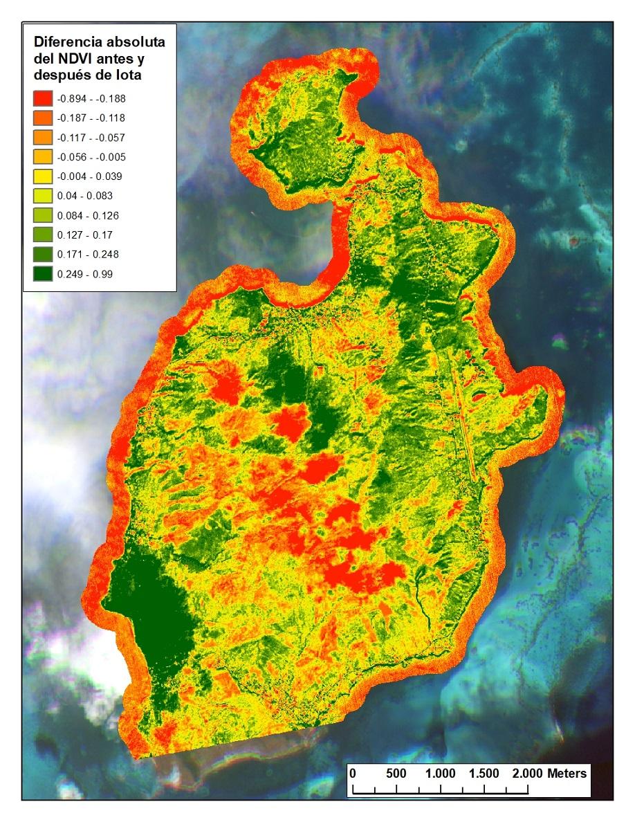 Los colores verdes indican las zonas donde pudo estar concentrada la mayor pérdida de vegetación en la isla de Providencia luego del paso del huracán Iota. Imagen: Instituto Humboldt.