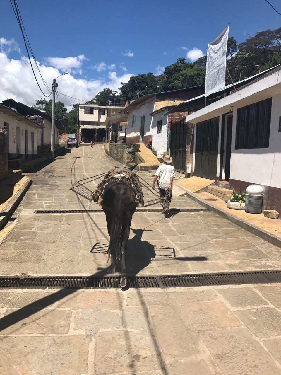 San José de Pare, tierra donde florecen la paz y la amistad - http://www.radionacional.co/