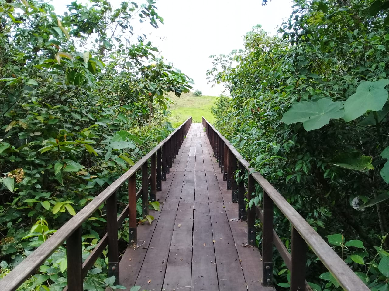 Foto: Cortesía Cooperativa Ecoturística Lomalinda.