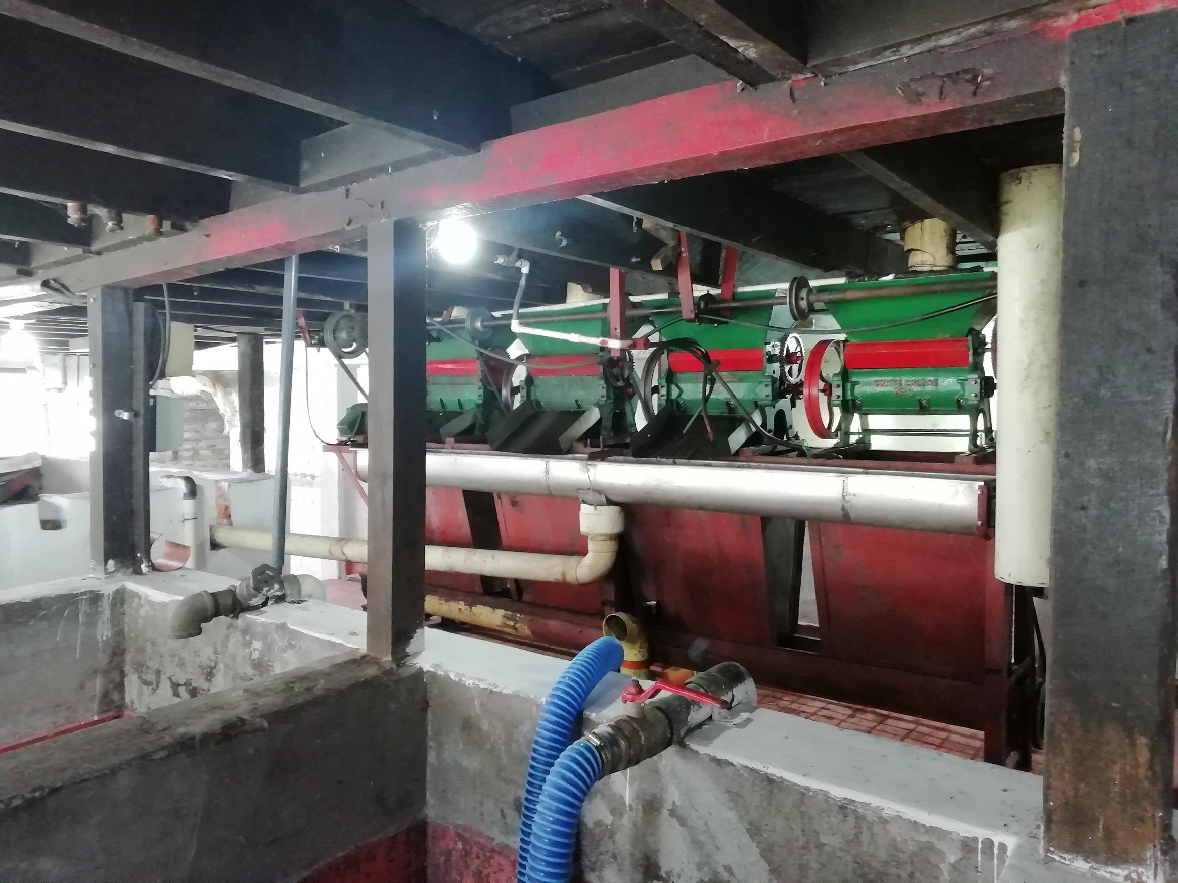 Maquinas para separar la cáscara del grano de café.