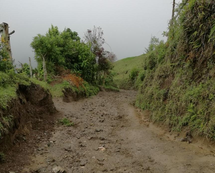 La comunidad desde hace 12 años no ve arribar un carro por la única vía que conecta la montaña con Madroñales. Foto: Vanesa Sánchez.