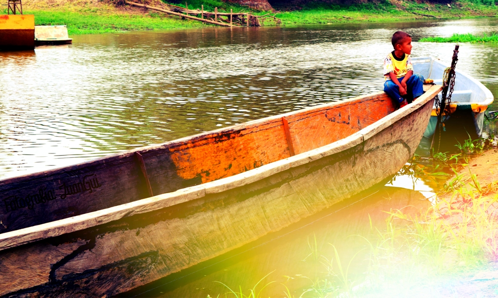 Foto: En los ríos que alimentan a Sabana de Torres crece una planta que se llama Taruya, y que es fuerte y generosa como la gente de esta región. Foto: Cortesía Alcaldía Sabana de Torres (Santander).