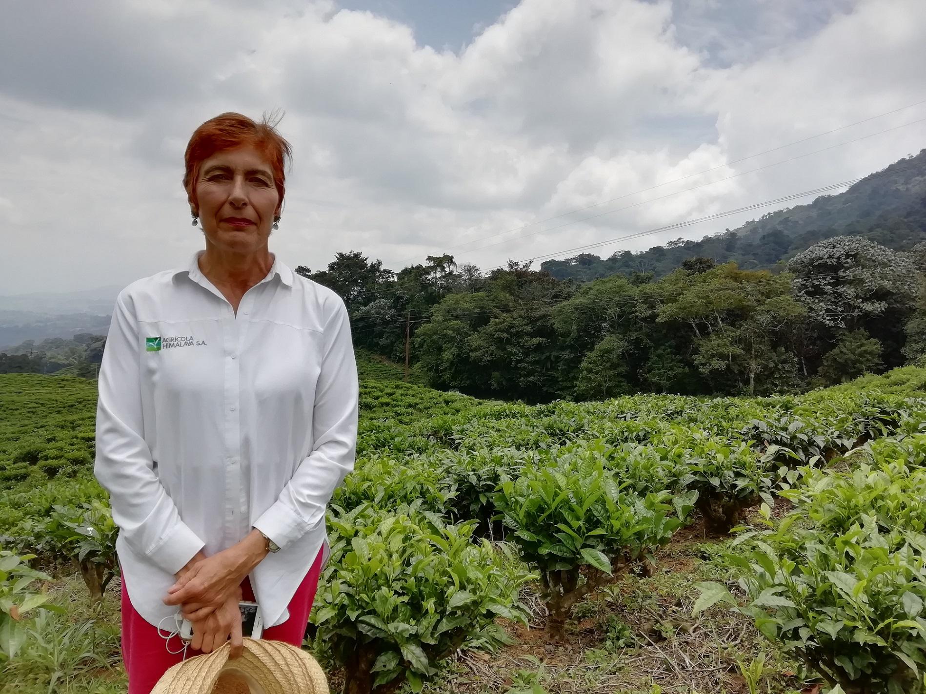 Carlota Llanos, gerente de la Fundación Agrícola Himalaya.