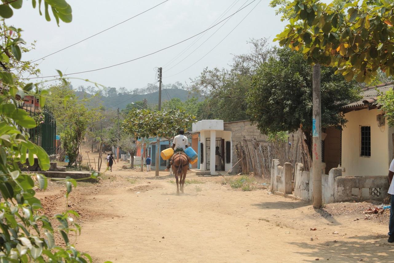 Foto: Cortesía Colectivo Kuchá Suto de Palenque.