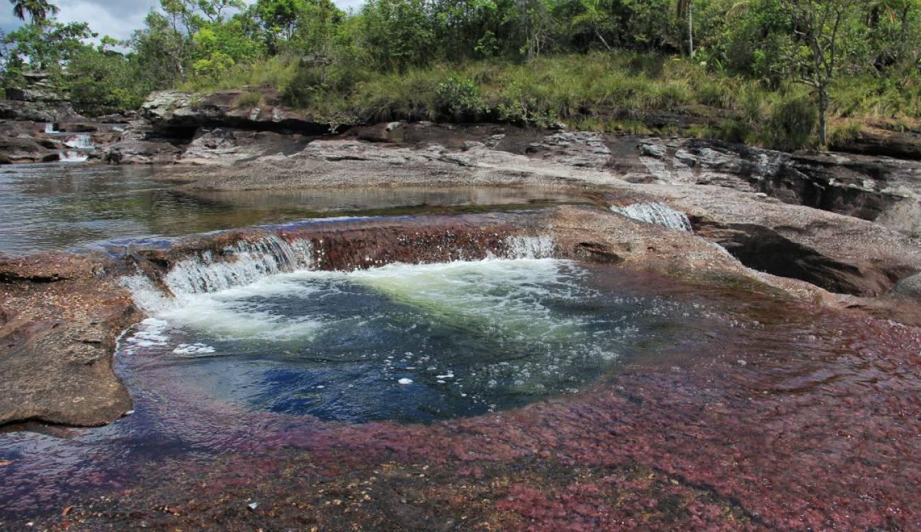 Foto: Parques Nacionales.