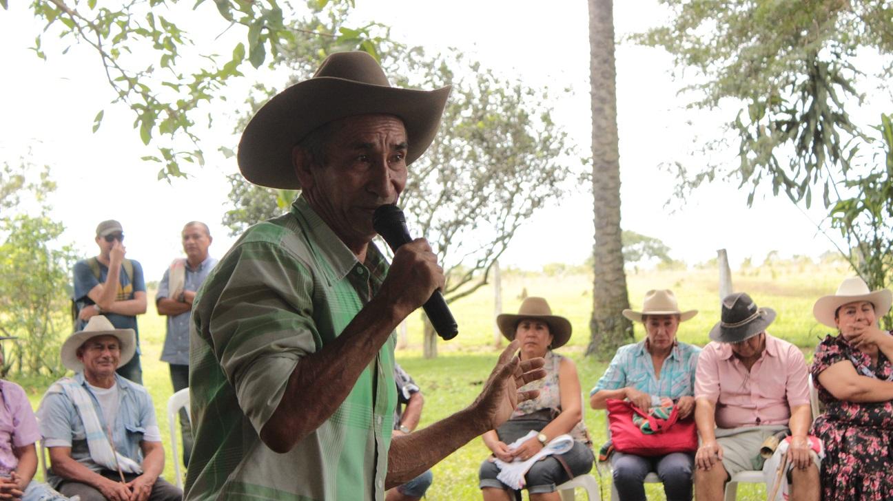 Foto: Nangibe Torres. Travesías de arpa. Radio Nacional de Colombia.