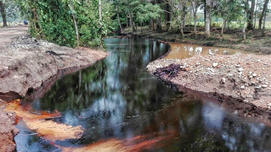 : Según expertos este es uno de los desastres ambientales más graves en la historia de Ecopetrol. Foto: Fabio Hernández, presidente de Asorural.