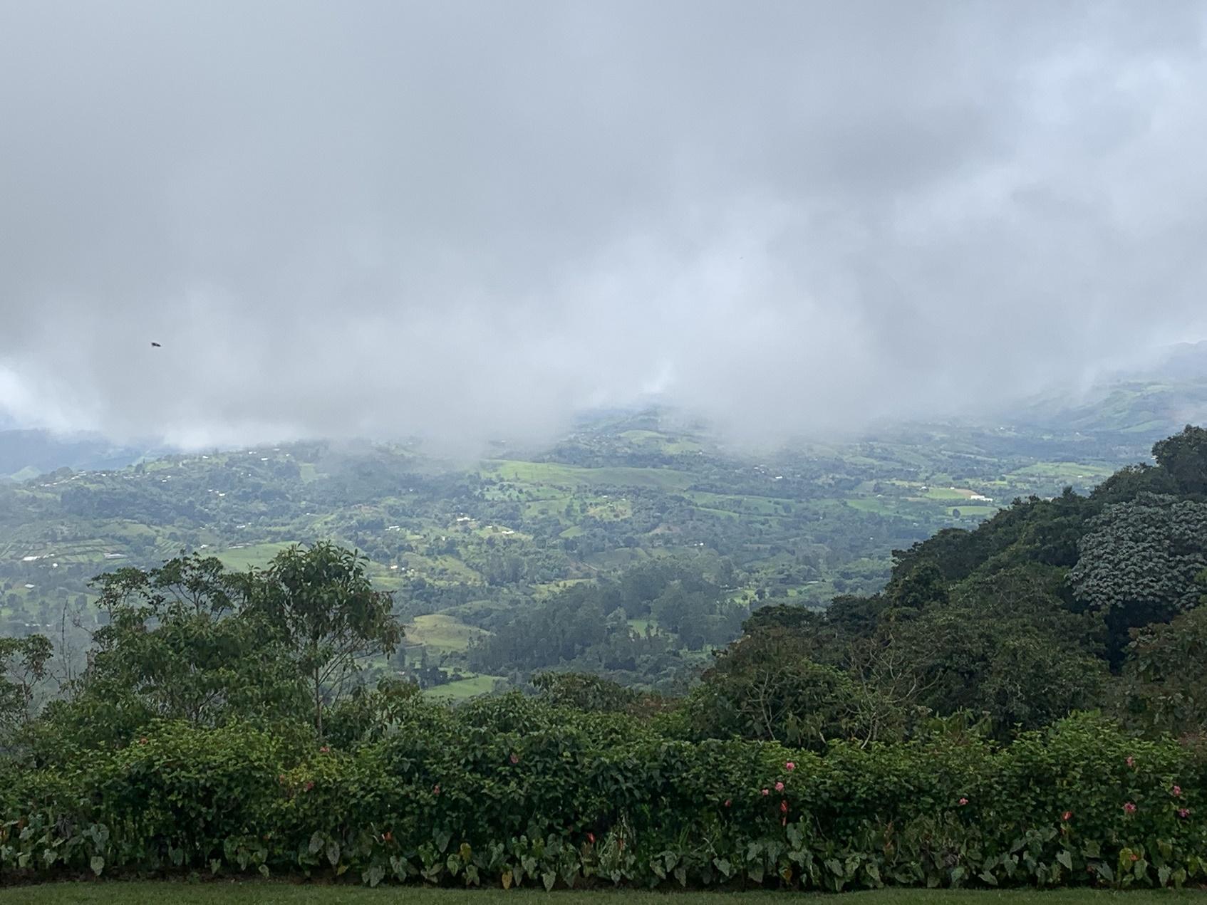 Paisaje en la Reserva Forestal Protectora de Bitaco. Foto: María Isabel Quintero.