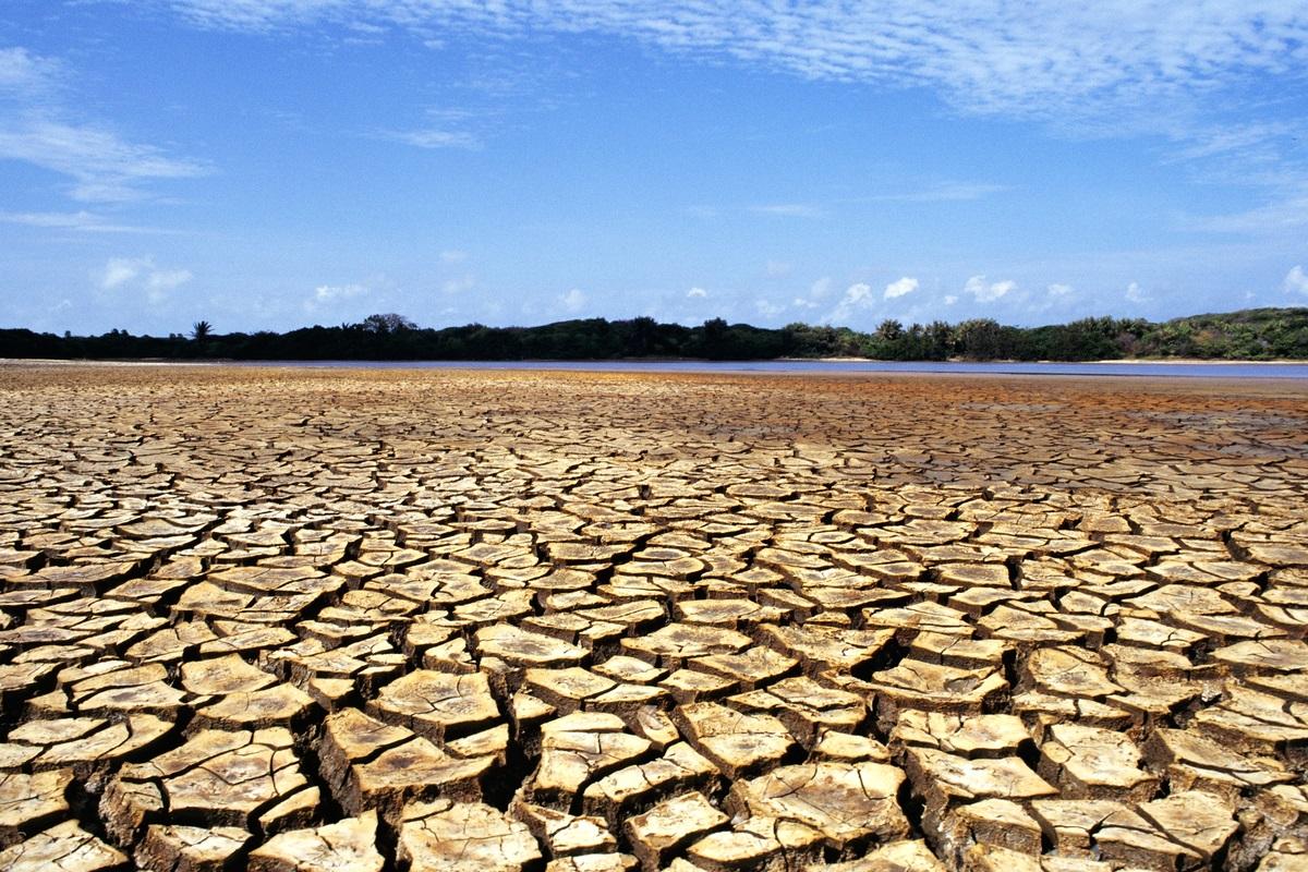Ilha do Caju, estado de Maranhão, Brasil. Foto: Adriano Gambarini / WWF-Brazil