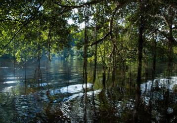Foto: Ministerio de Ambiente.
