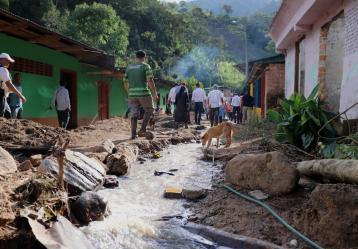Foto: Gobernación de Tolima.