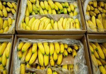 Foto: www.minagricultura.gov.co.