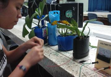 El proyecto de biomasa con plantas es realizado por jóvenes de bajos estratos de Acacías (Meta). Foto: Cortesía Grupo de Investigación Energías para el Futuro.
