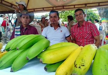 Foto: John Fredy Nagles Soto- Radio Nacional de Colombia, Chaparral – Tolima