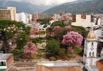 Foto: Gobernación del Tolima.