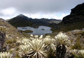 Foto: Cortesía www.vetas-santander.gov.co