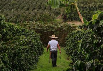 Foto: Ministerio de Agricultura.