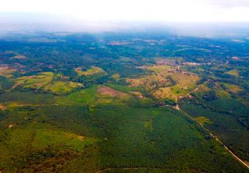 Fotos: apccolombia.gov