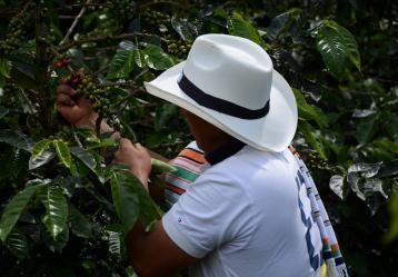 Foto: Jeimmy Baquero-Alcaldía de Guayabetal