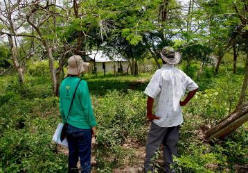De acuerdo con la Unidad de Restitución de Tierras, un total de 300 mil hectáreas de tierras ya han sido retornadas en todo el país. Foto: Colprensa. Abril 2018.