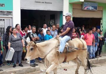 La carrera de bueyes se realiza por dos manzanas del municipio de San Lorenzo, entre 20 y 30 competidores se reúnen cada año.