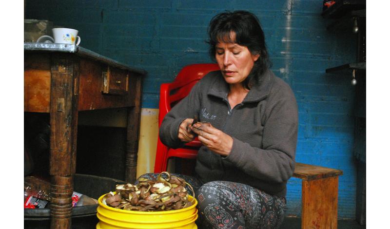 Nidia Sanabria, mientras conversamos y trabaja en su restaurante