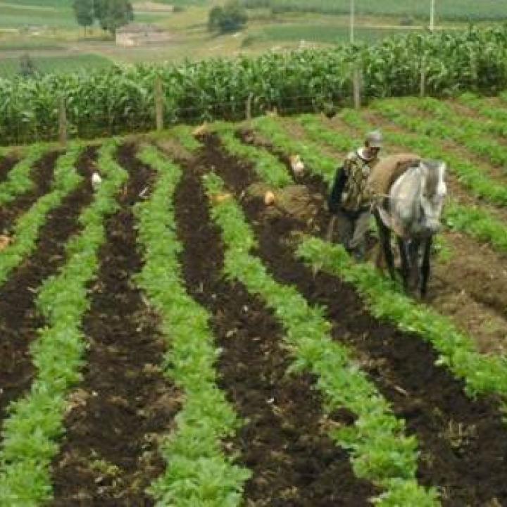 Foto: Ministerio de Agricultura y Desarrollo Rural