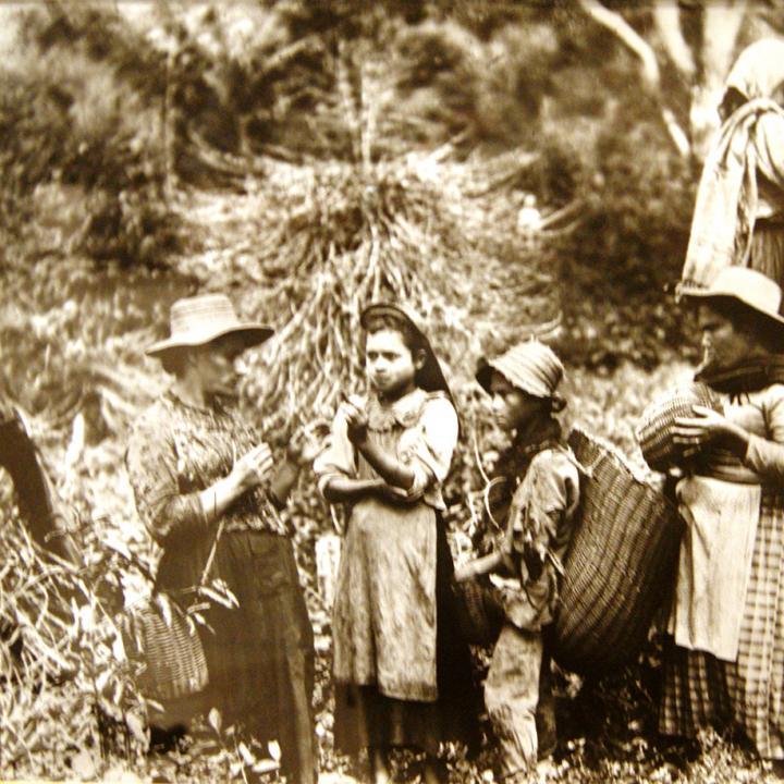 Chapoleras antioqueñas en 1910.