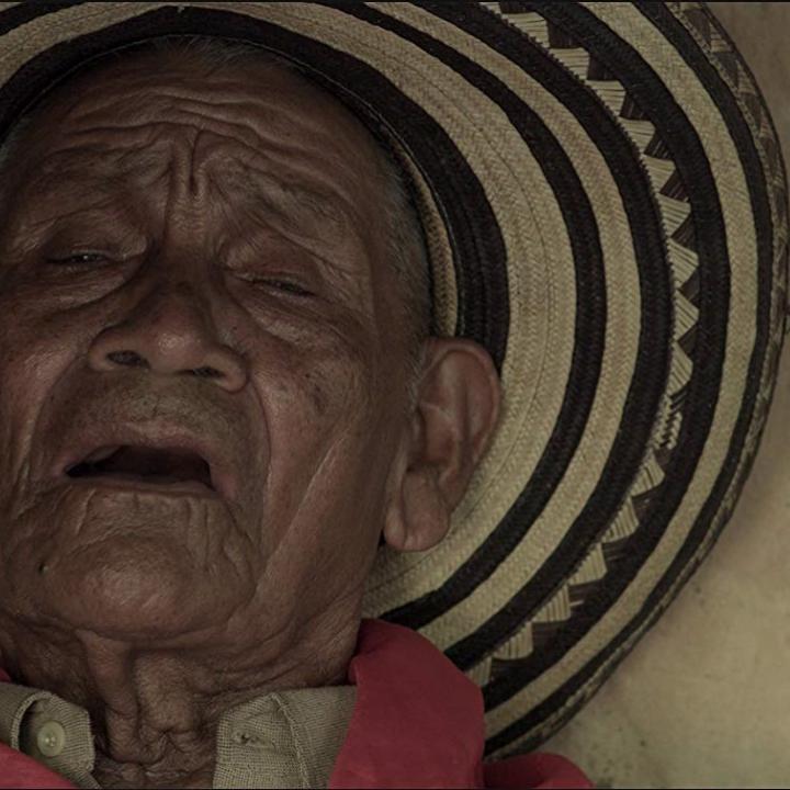 Foto: Imagen cortometraje 'Bajo la sombra del guacarí', estrenado en el Festival de Sundance.