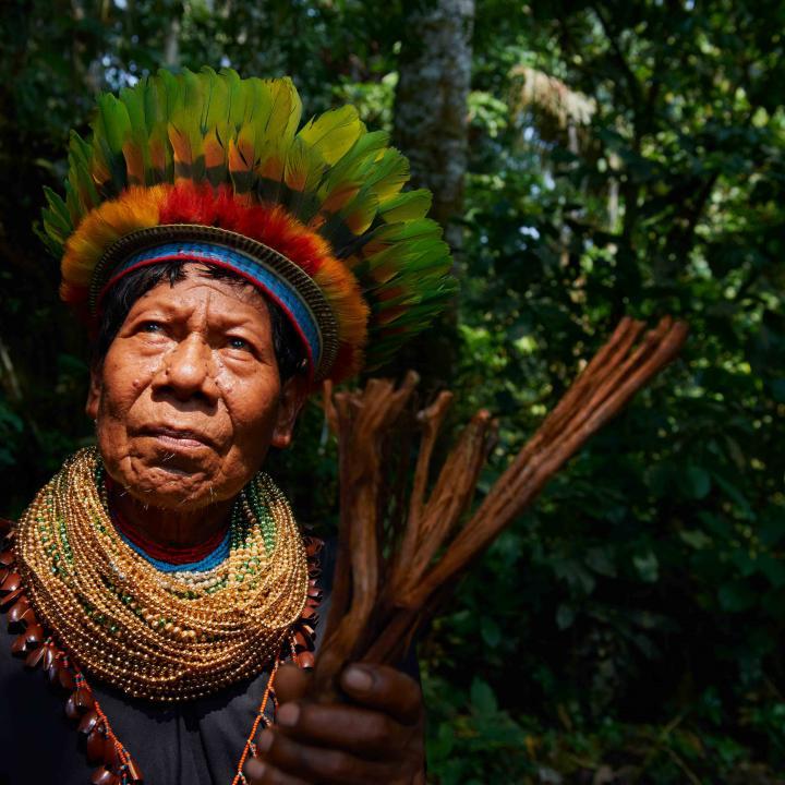 Resultado de imagen para brasil indigena la amazonia
