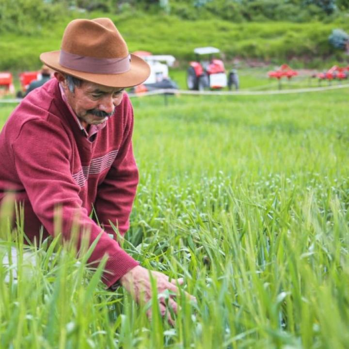 Foto Twitter Ministerio de Agricultura