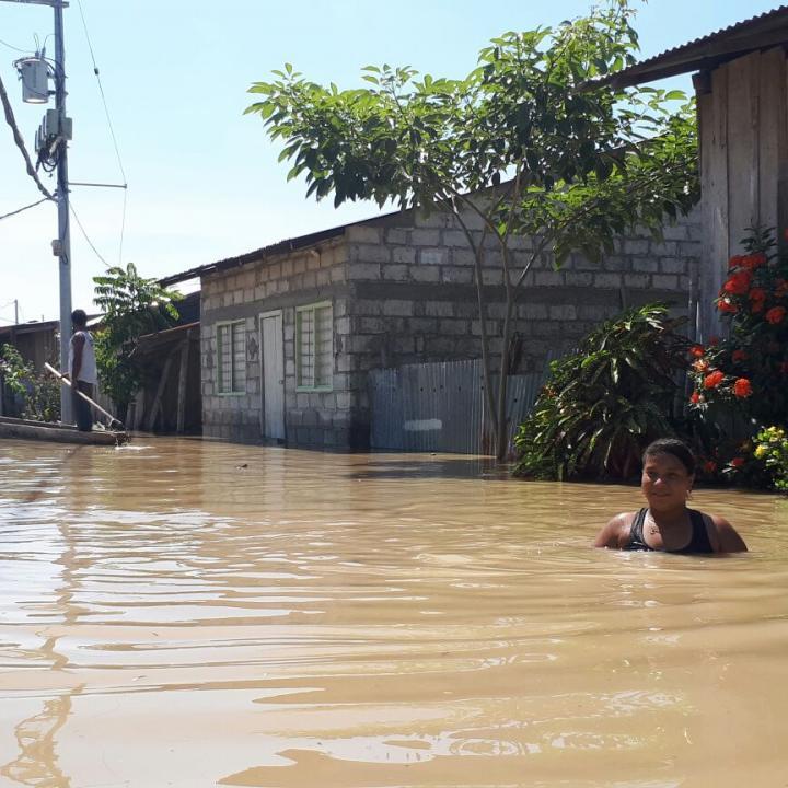 Foto: NP Noticias