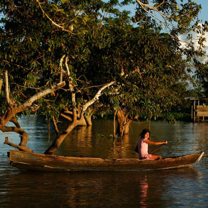 Medios ambiente en Colombia: retos 2019 | Radio Nacional de